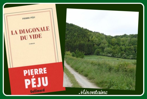 Pierre Péju.jpg