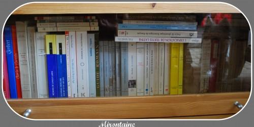 Bibliothèques 004.jpg