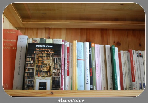 Bibliothèques 001.jpg