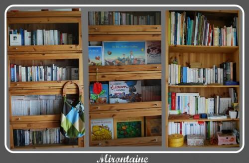 Bibliothèque collage.jpg