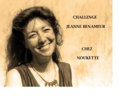 Challenge-Jeanne-Benameur.jpg